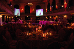 Pink Frolic Ball Room