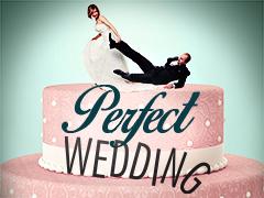 Perfect Wedding Logo
